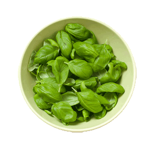 Photo: bowl of basil leaves