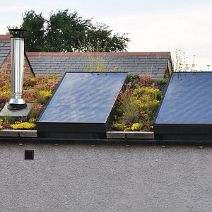 Lamonby: green roof solar