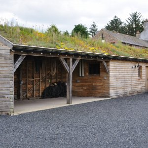 Lamonby: green roof