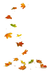 Image: falling leaves